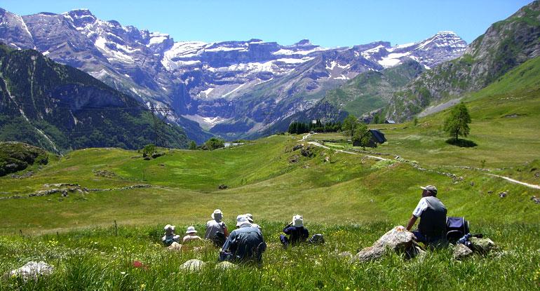Programbild Pyreneerna