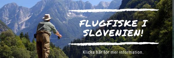 Flugfiske i Slovenien