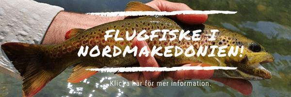 Flugfiske i Nordmakedonien